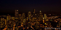 Seattle Night SLR